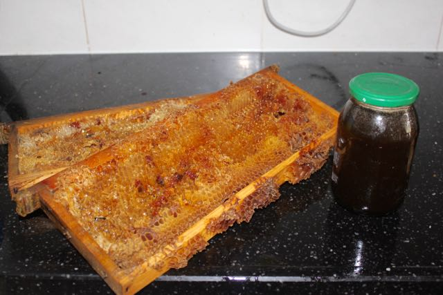 Extracted frames & sieved honey