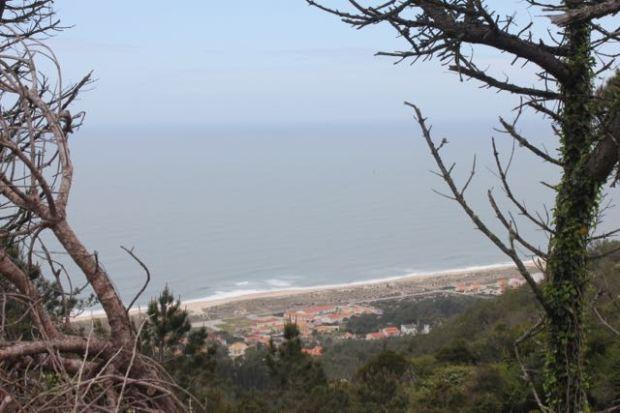 murthinheira from Cabo Mondego.jpg