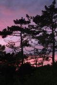 murthinheira, sunset