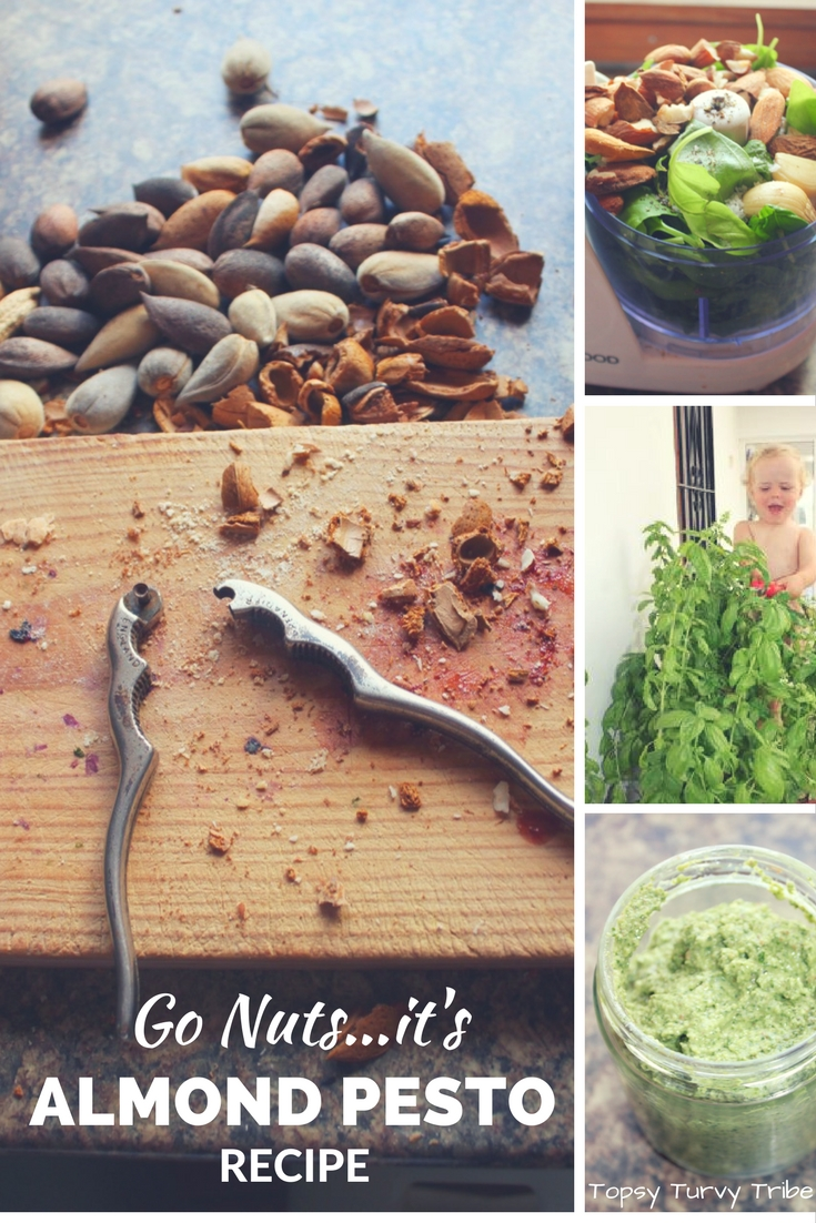 almond-pesto-recipe
