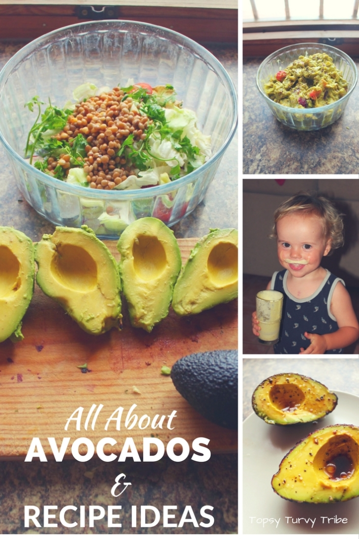 avocados-all-about-avos-and-recipes-too