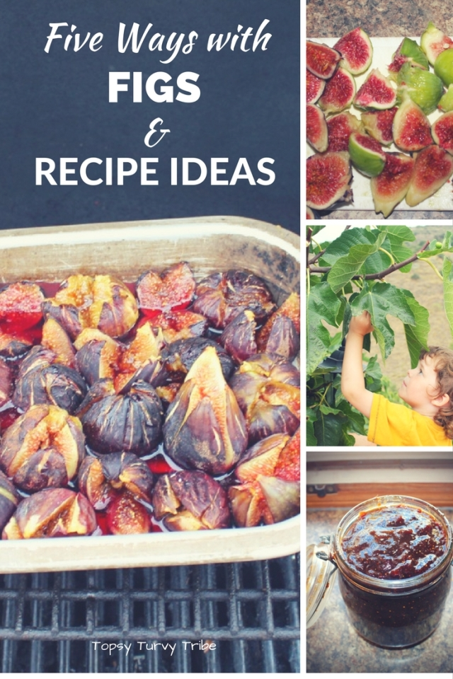 figs-all-about-figs-and-recipes-too
