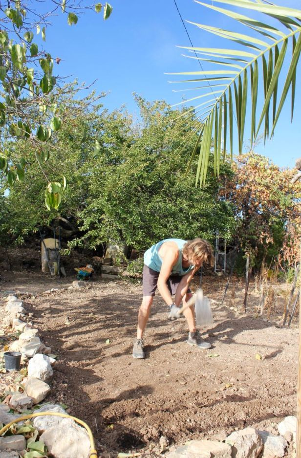 preparing-the-ground-digging