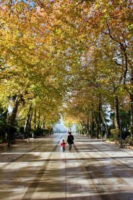 alameda-park-ronda