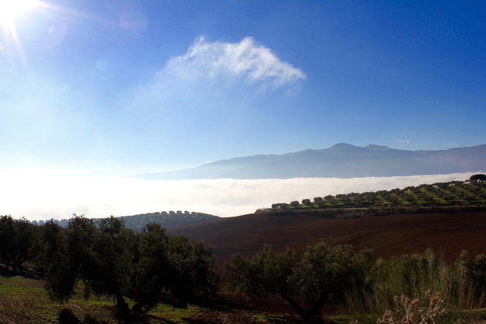 view-towards-sierra-de-loja-.jpg.jpeg