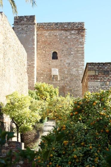 alcazaba-courtyard