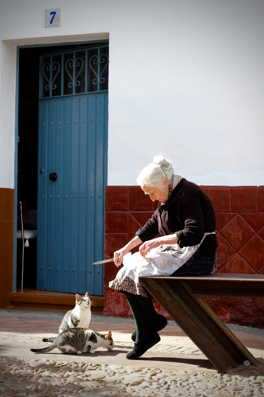 Old Spanish Lady feeding her cats- Señora Gato