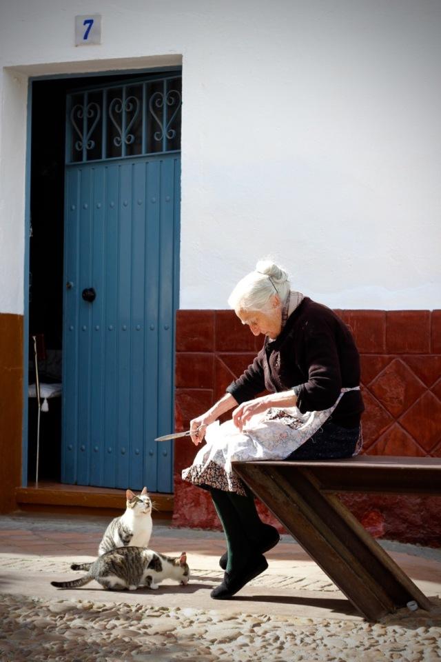 Old Spanish Lady feeding her cats- Señora Gato