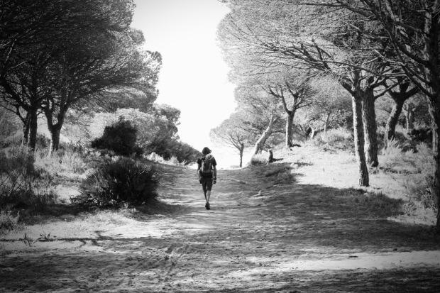 Footpath Parque Natural de la Brena y Marismas, Cadiz Province, Spain