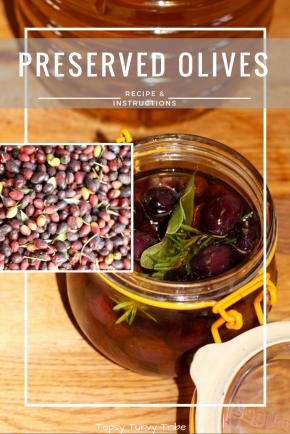 How to Preserve Olives in Oil, Recipe & Instructions by Topsy Turvy Tribe