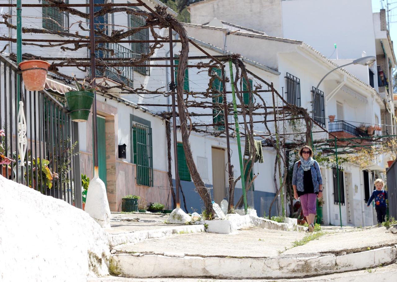 Vines Montefrio Andalucia