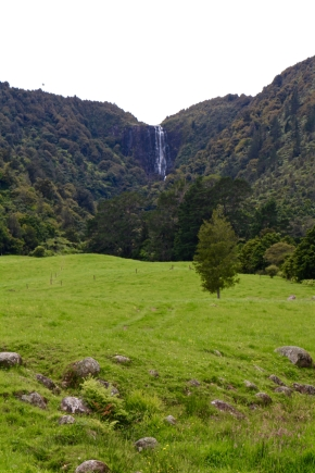 Wairere Falls from a distance, Kaimai range, North Island, New Zealand, Topsyturvytribe